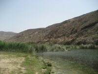 Oase in Dhofar