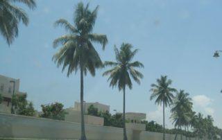 Doe Strandavenue in Salalah