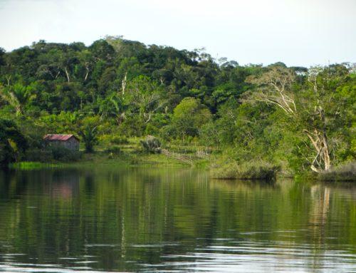 BRASILIEN – SAMBA UND REGENWALD